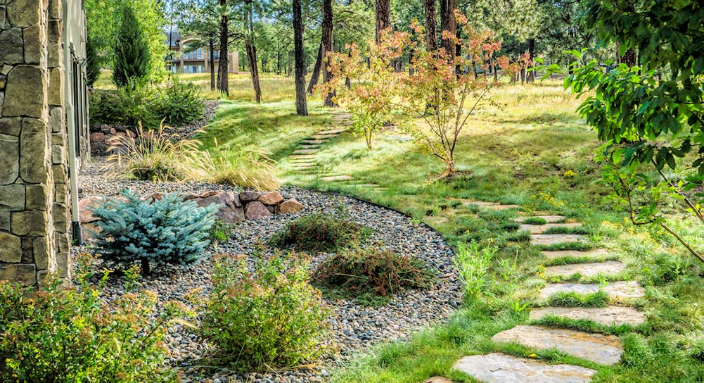 These Siloam stone stepping stones were set in native soil, which was then seeded with native grass seed.