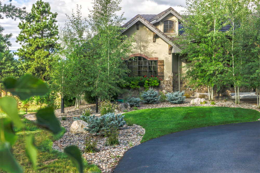 This small front lawn gives a splash of vibrant green without a lot of water.