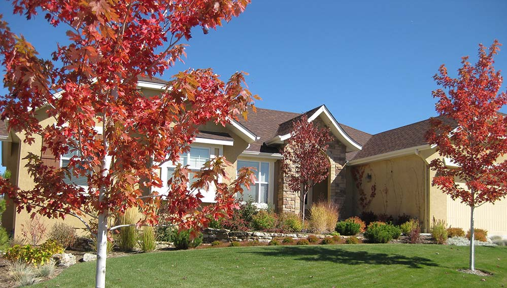 Well maintained Colorado Springs residential landscape in the fall.